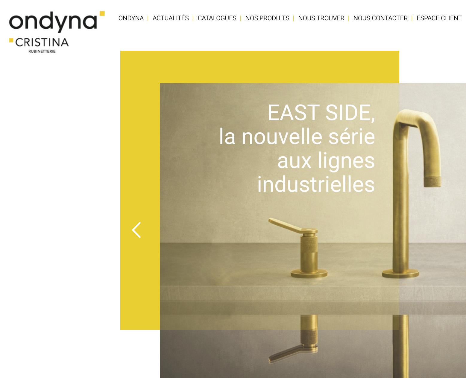 Site web, Ondyna, Cristina, internet